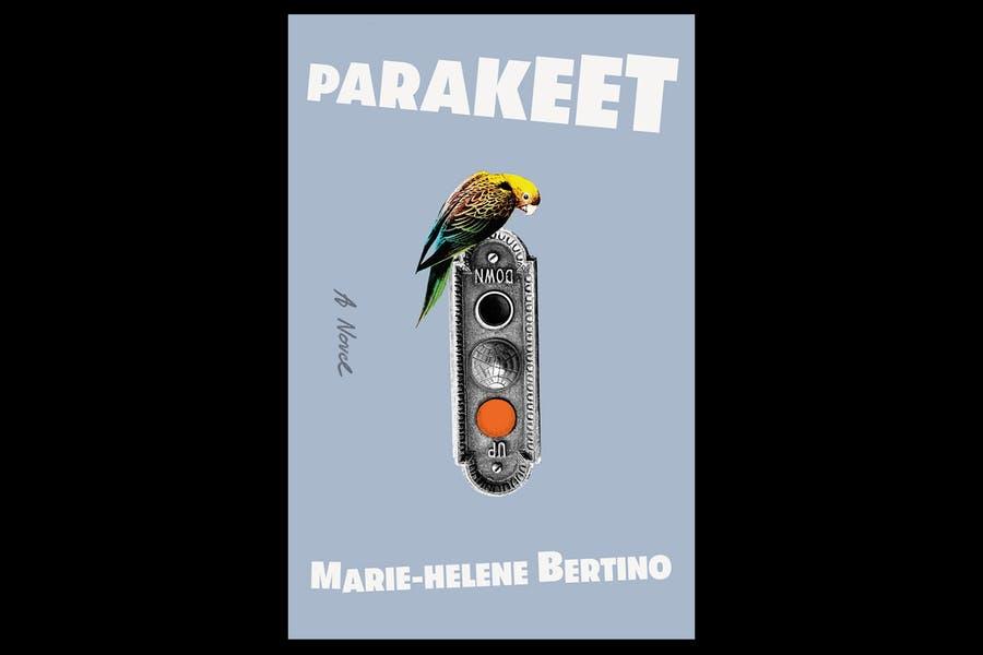 Lang_NNImage_Parakeet