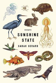 Sunshine State book cover